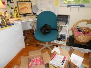 Duffy Brown's Writing Space