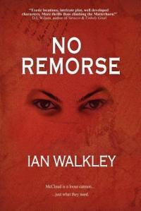 No Remorse Book Cover