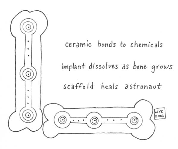 Printed Bones (blog)